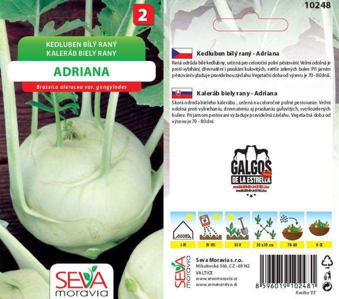 Seva Moravia s.r.o. VALTICE Kedluben ADRIANA