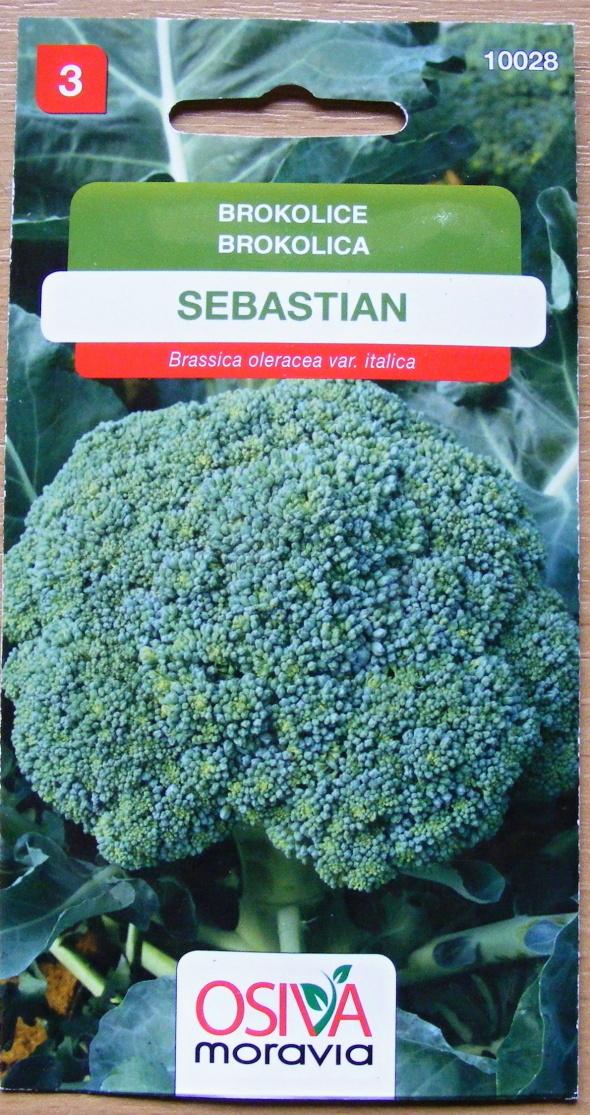 Osiva Moravia s.r.o. Neředín Brokolice SEBASTIAN