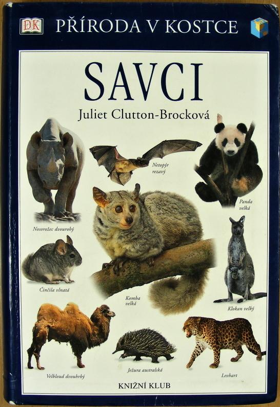 Savci - Juliet Clutton-Brock