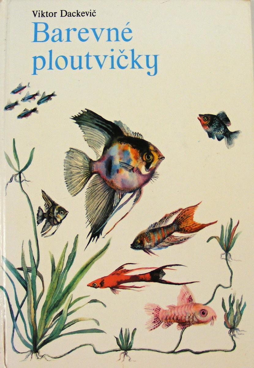 Barevné ploutvičky - Viktor Dackevič